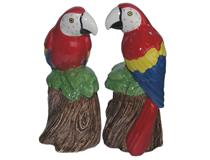 MACAW SALT AND PEPPER